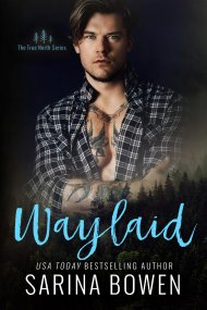 Waylaid cover - (un)Conventional Bookworms - Weekend Wrap-up